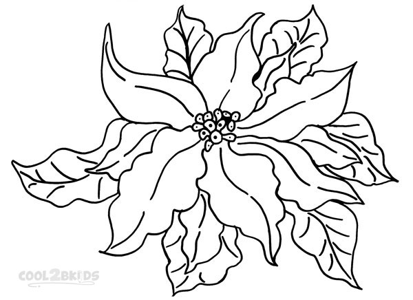Images of Poinsettia Coloring Pages Print