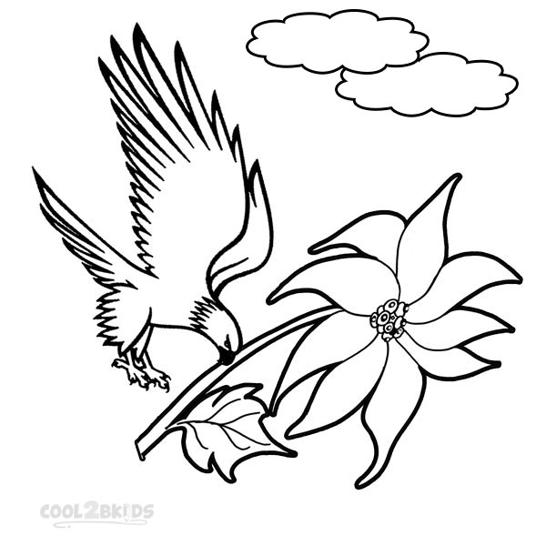 Picture of Printable Poinsettia Coloring Pages