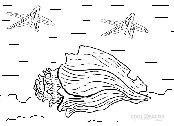 seashell coloring pages to print | Printable Seashell Coloring Pages For Kids | Cool2bKids
