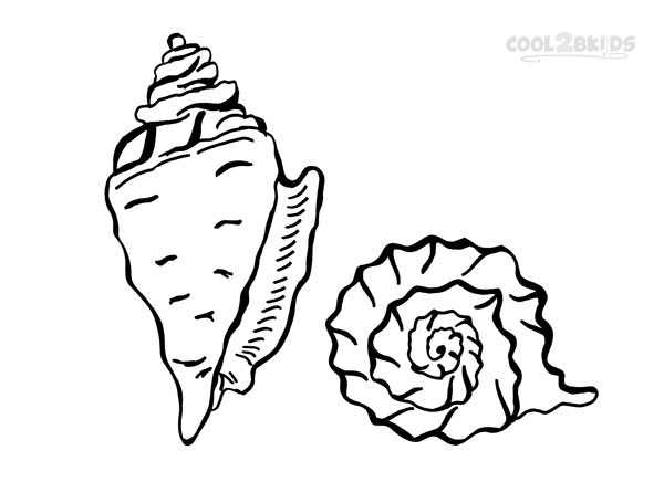 seashells coloring pages - Seashell Coloring Pages Printable
