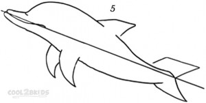 How To Draw a Dolphin Step 5