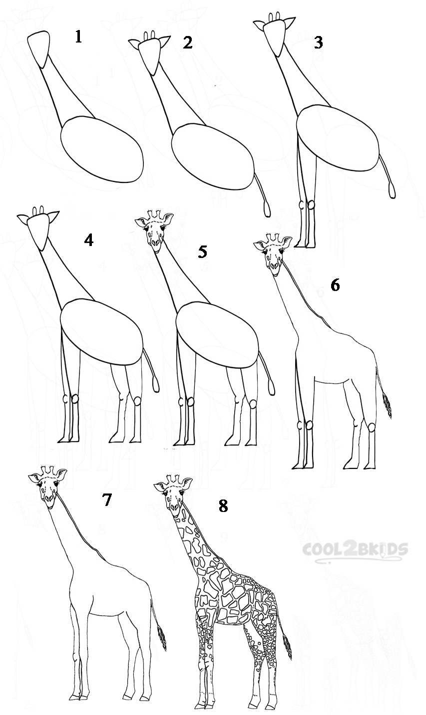How To Draw A Giraffe (Step By Step Pictures) | Cool2bKids