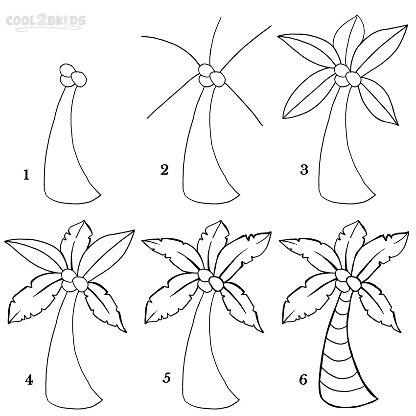 How To Draw a Palm Tree Step by