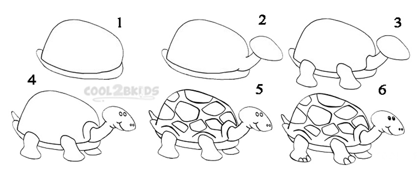 http://www.cool2bkids.com/wp-content/uploads/2014/03/Draw-a-Turtle-Step-by-Step.jpg Baby Sea Turtles Drawings Step By Step