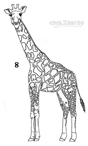 How to draw a giraffe step 8