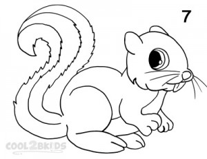 How To Draw a Squirrel Step 7