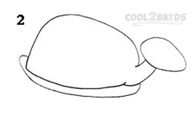 How To Draw a Turtle Step 2