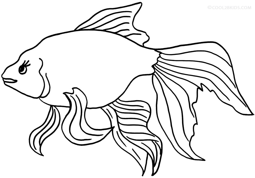 free printable goldfish coloring pages - photo#7