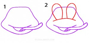 How To Draw a Frog Step 1
