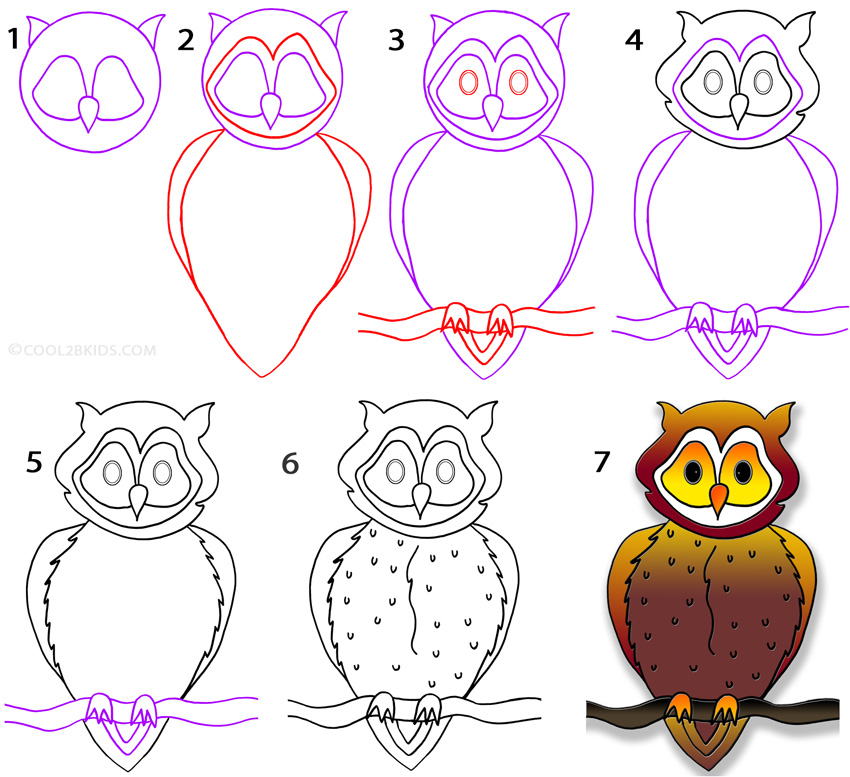 how to draw an owl step by step pictures cool2bkids