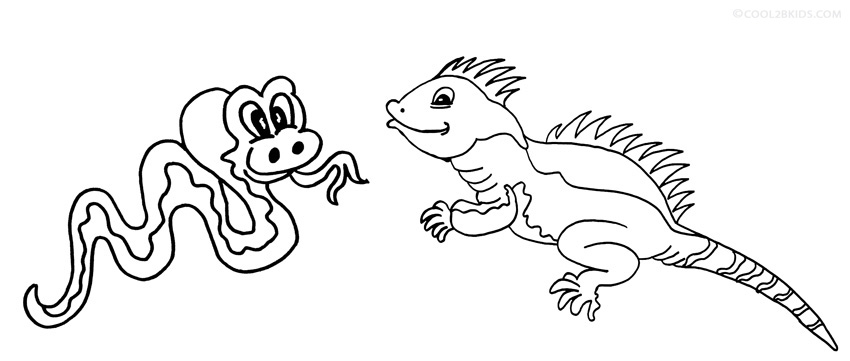 Iguana Coloring Page To Print