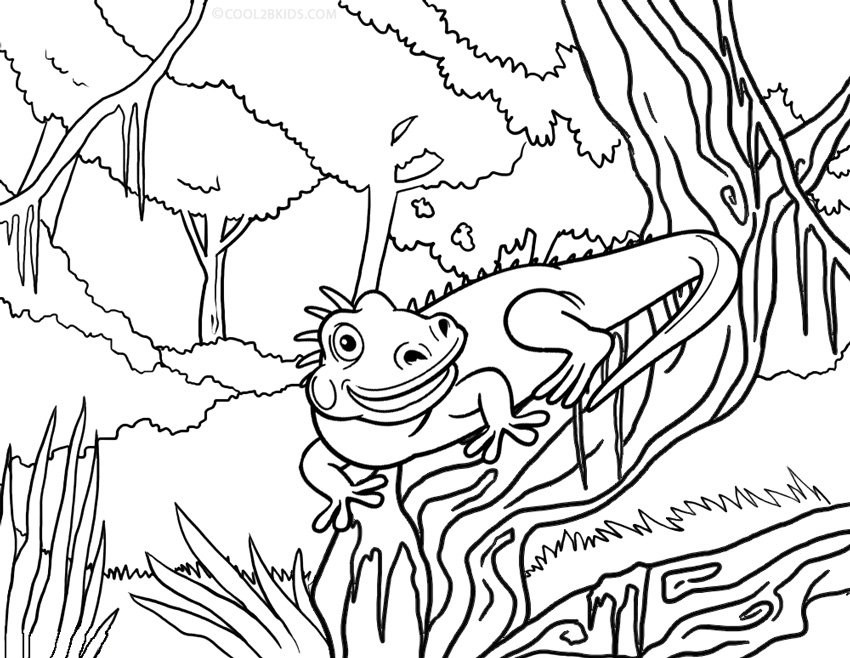 Printable Iguana Coloring Pages For Kids | Cool2bKids