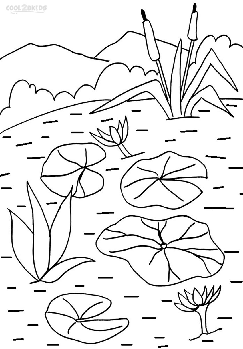 Printable Lily Pad Coloring Pages For Kids | Cool2bKids