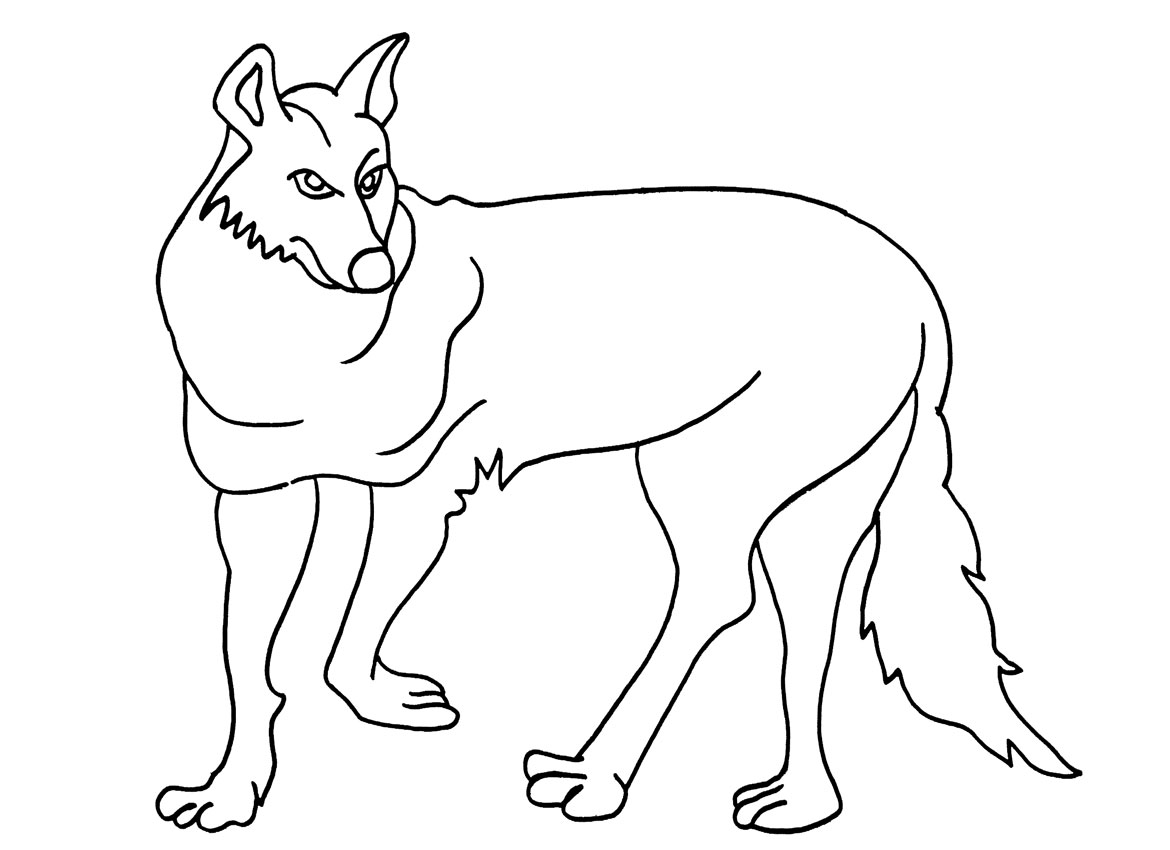 Printable Coyote Coloring Pages For Kids Cool2bKids