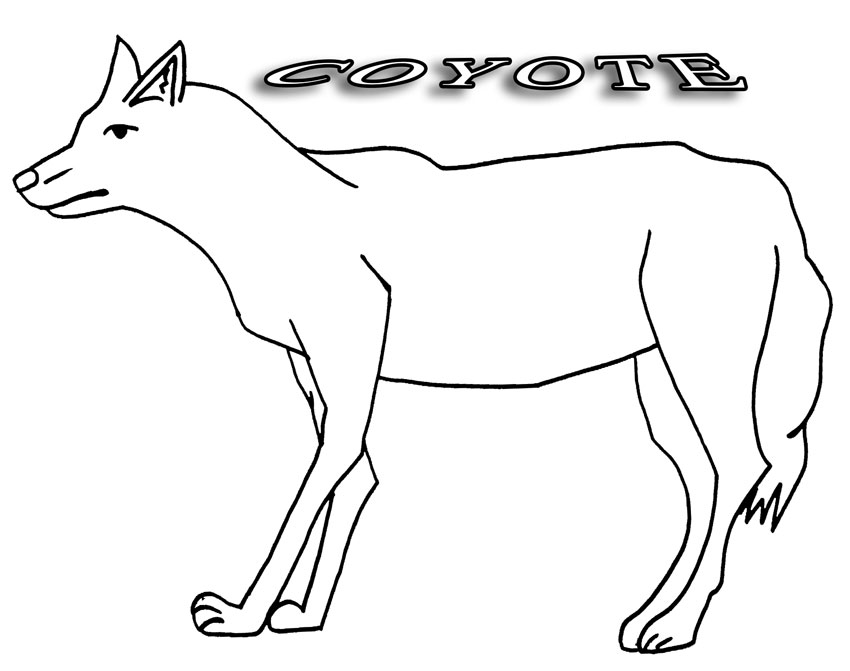 coyote pictures coloring pages - photo#15