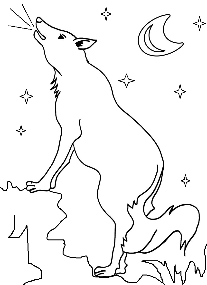 coyote pictures coloring pages - photo#19