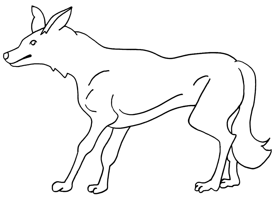 Free Coyote Coloring Pages