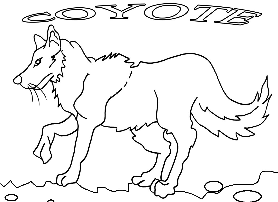 Printable Coyote Coloring Pages