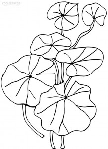Lily Pad Coloring Pages For Kids