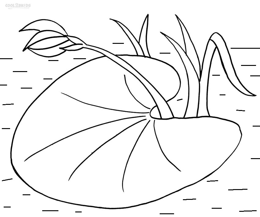 lily pad coloring pages Printable Lily Pad Coloring Pages For Kids | Cool2bKids lily pad coloring pages