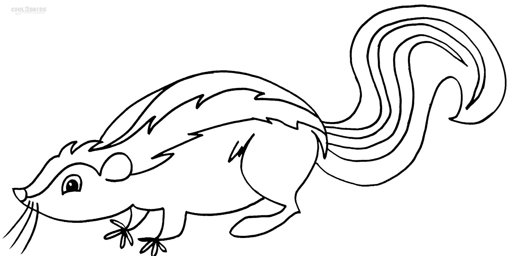 coloring page of a skunk printable skunk coloring pages for kids cool2bkids