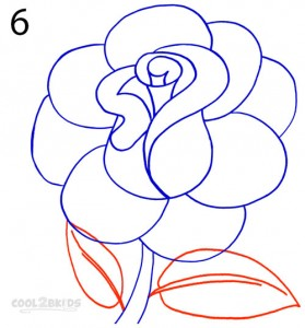 How To Draw a Realistic Rose Step 6
