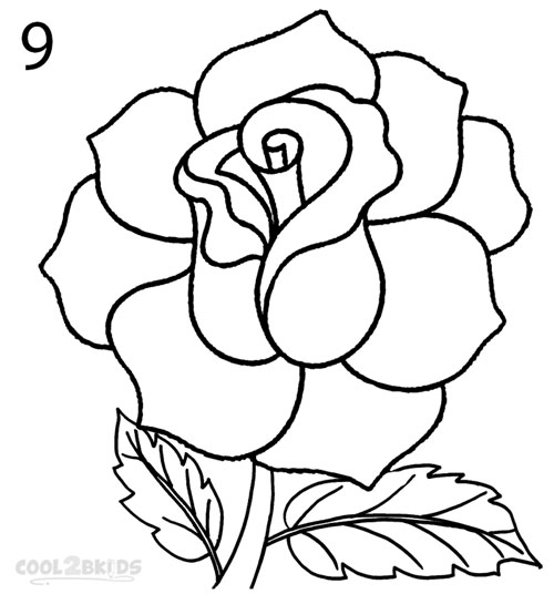 How To Draw A Realistic Rose Step By Step Pictures