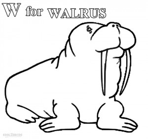 Coloring Pages of Walrus