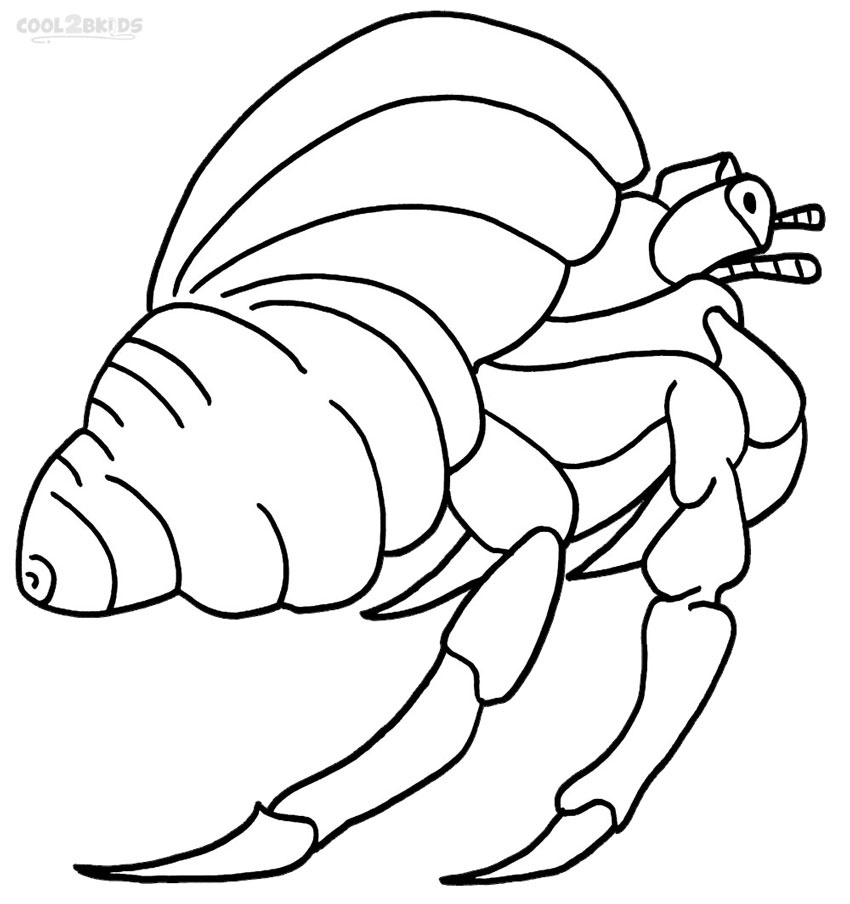 High Quality Hermit Crab Coloring Pages To Print