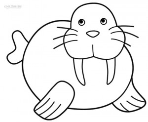 Walrus Coloring Pages for Kids
