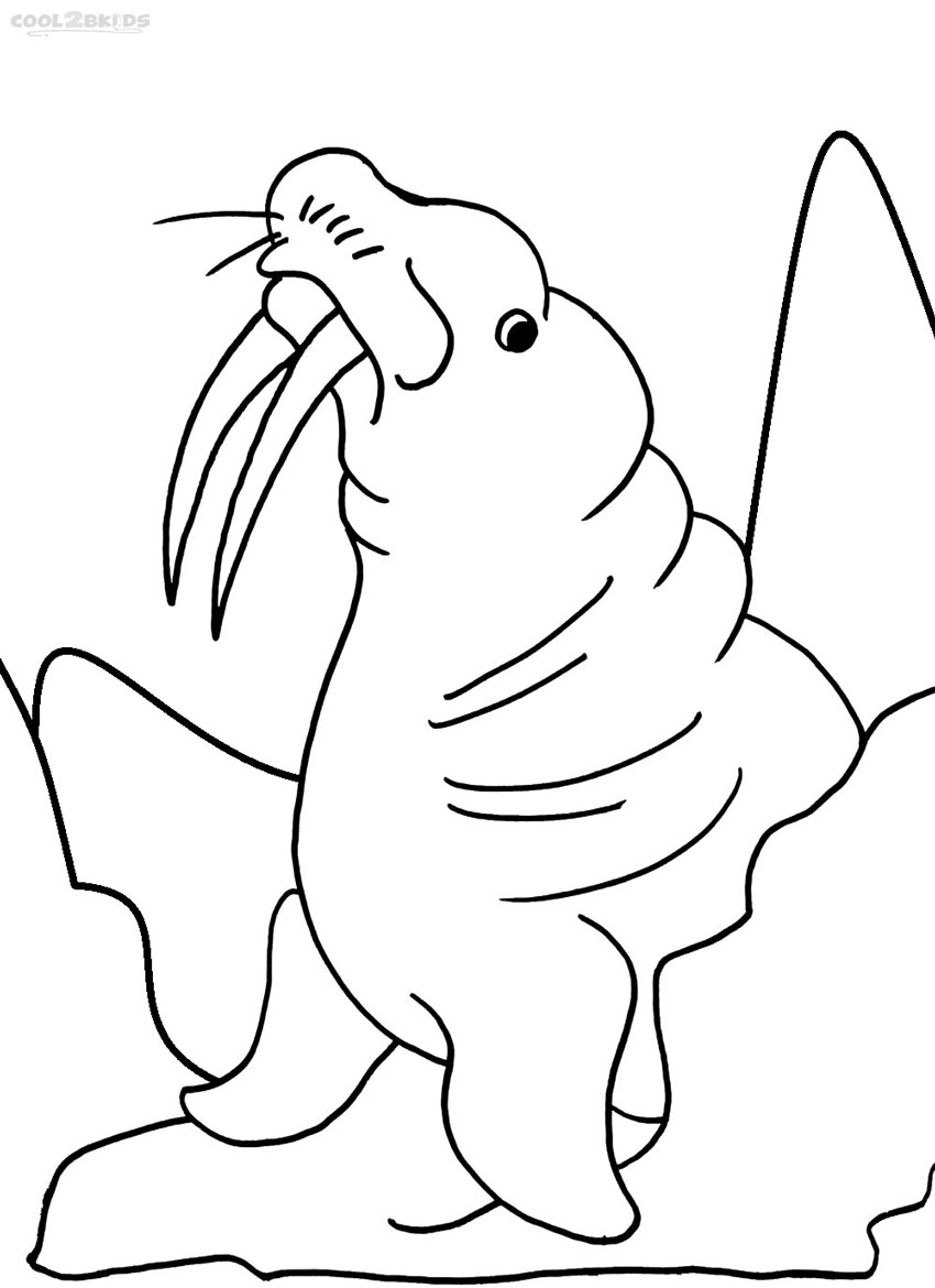 Printable Walrus Coloring Pages For Kids