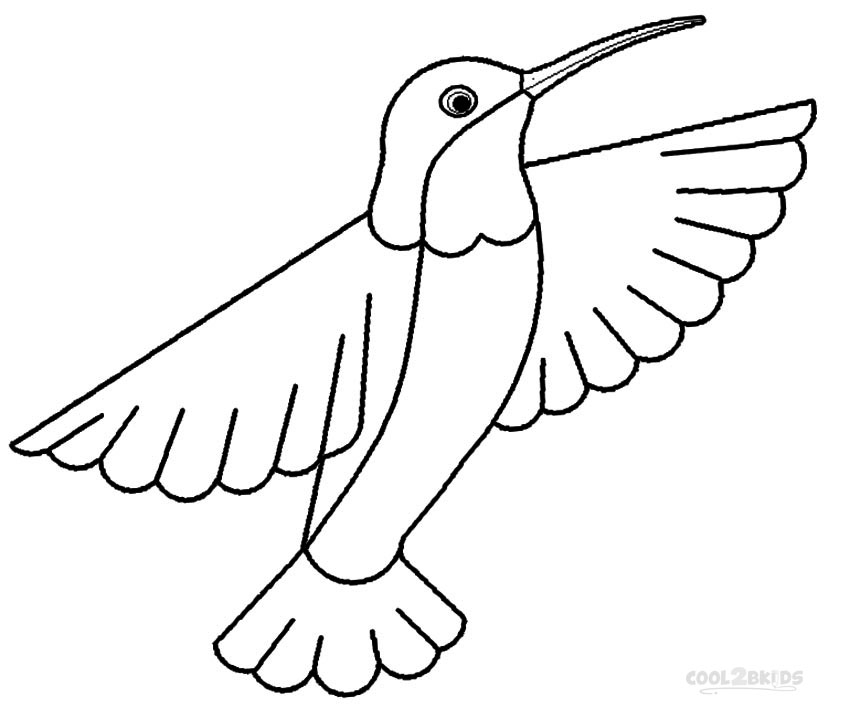 Baby Hummingbird Coloring Pages Coloring Coloring Pages
