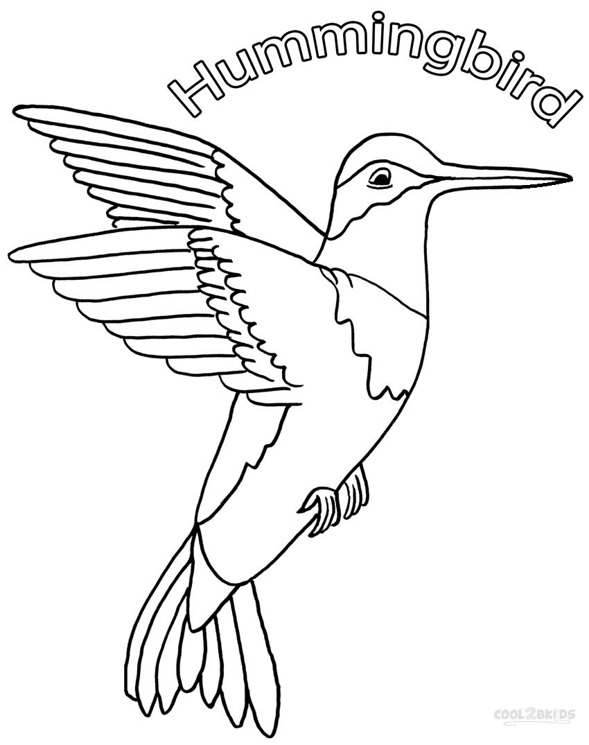 Hummingbird Coloring Pages For Kids