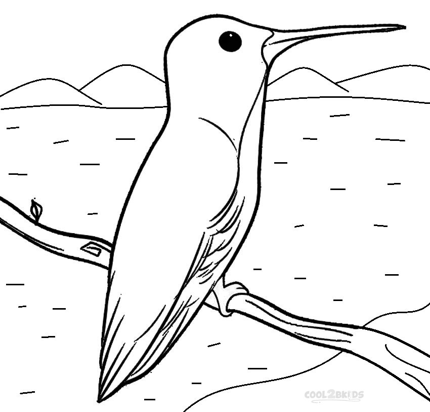 Printable Hummingbird Coloring Pages For Kids Cool2bkids Hummingbird Coloring Page