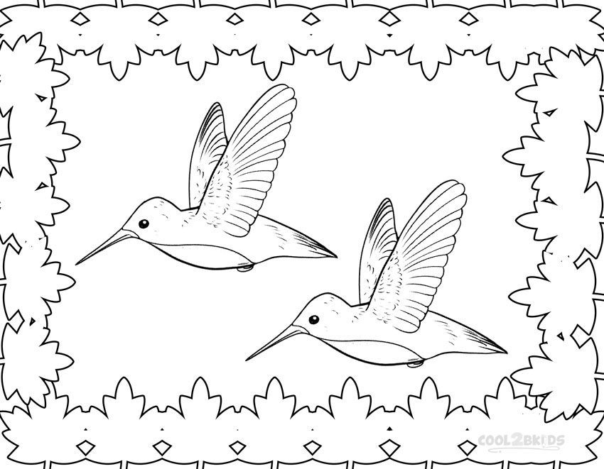 Best Hummingbird Flower Coloring Pages Photos New Printable