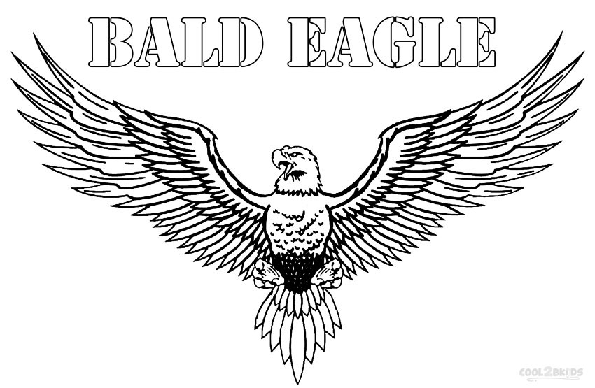 Printable Bald Eagle Coloring Pages For Kids Cool2bkidsrhcool2bkids: Realistic Eagle Coloring Pages At Baymontmadison.com