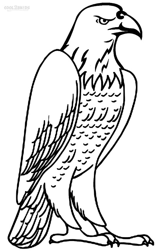 eagle head coloring page coloring pages