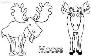 Coloring Pages of Moose