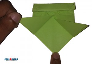 Origami Paper Frog 13