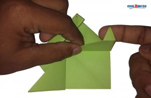 Origami Paper Frog 14