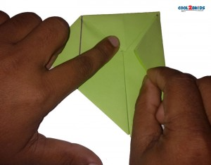 Origami Paper Frog 8