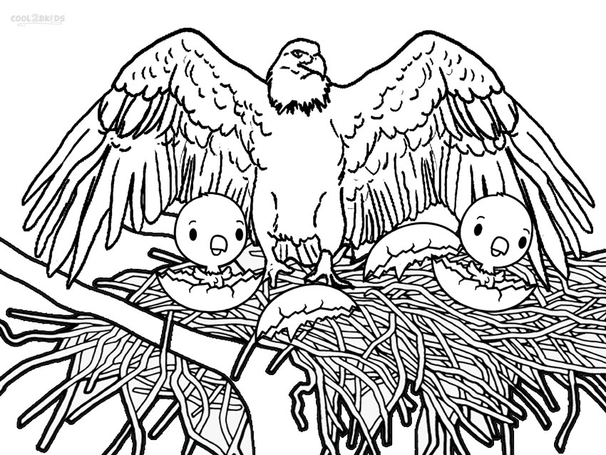 Printable Bald Eagle Coloring Pages For Kids | Cool2bKids
