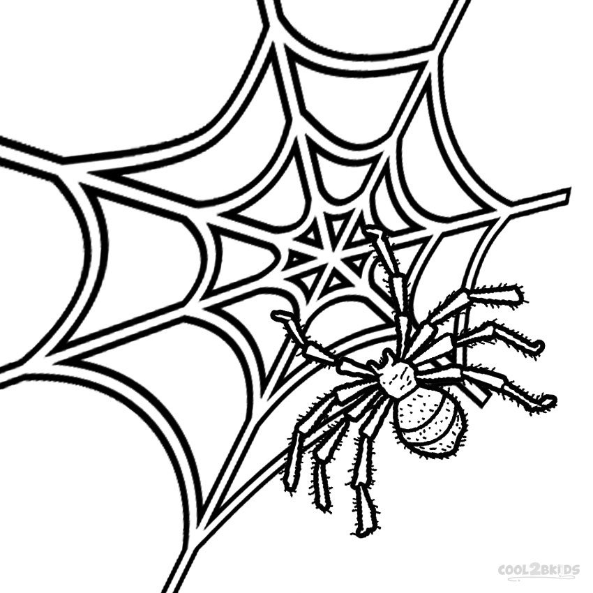 Free Coloring Page Of A Spider, Download Free Clip Art, Free Clip ... | 850x850