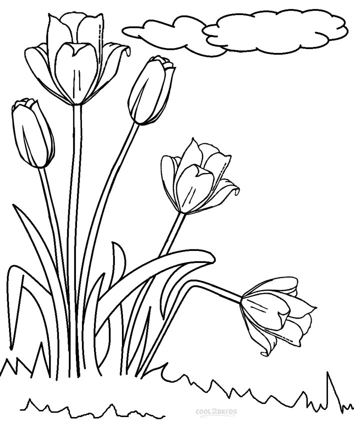 Printable Tulip Coloring Pages For Kids | Cool2bKids