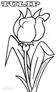 Tulip Coloring Pages Printable