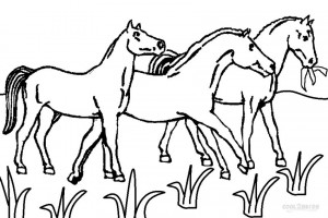 Horseland Horses Coloring Pages