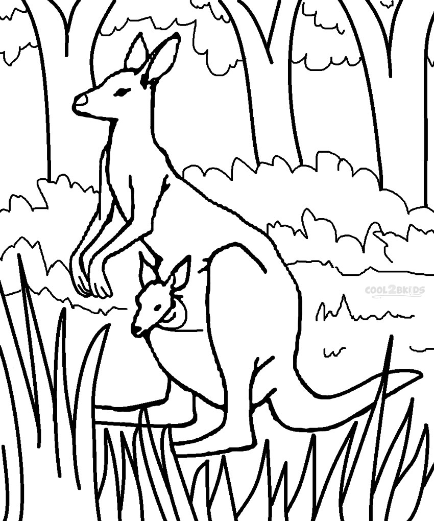 Printable Kangaroo Coloring Pages