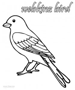 Webkinz Bird Coloring Pages