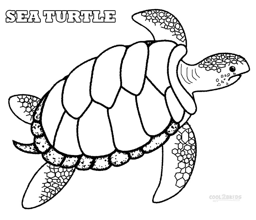 Sea Turtle Coloring Pages - GetColoringPages.com | 731x850