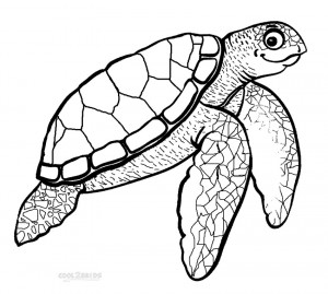 Hawksbill Sea Turtle Coloring Pages